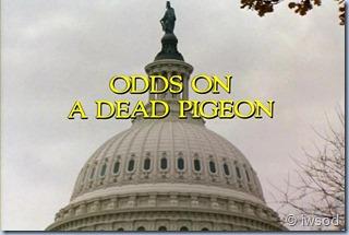 2.17 ODDS ON A DEAD PIGEON.avi_000080747